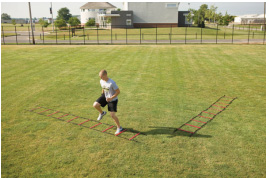 PowerMax 30ft Agility Ladder