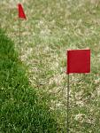 Course Marking Flags
